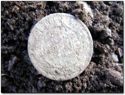Coin Dug Up