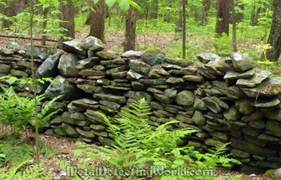 Stone Wall in the Woods, Montgomery County, New York