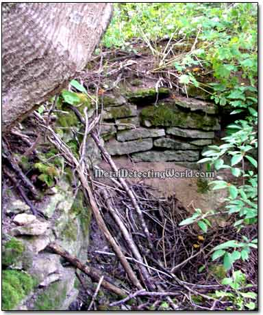 Discovery of a Root Cellar