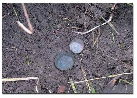 Russian Imperial Coins Found