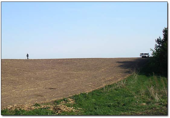 Metal Detecting in Field