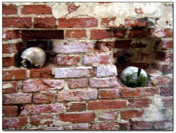 Dug Skulls In The Wall Holes