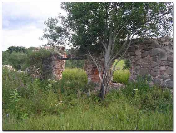 Ruins Of Old Homestead