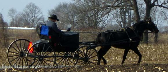 Amish Passing by in a Buggy